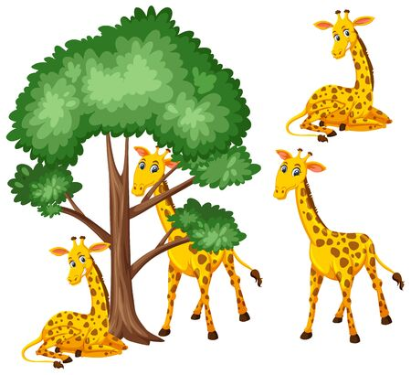Big tree and cute giraffes on white background illustration
