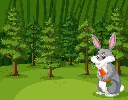 Scene with rabbit eating carrot in the big forest illustration