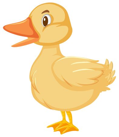 One cute little duckling on white background illustration