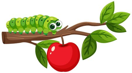 Green caterpillar on apple branch illustration