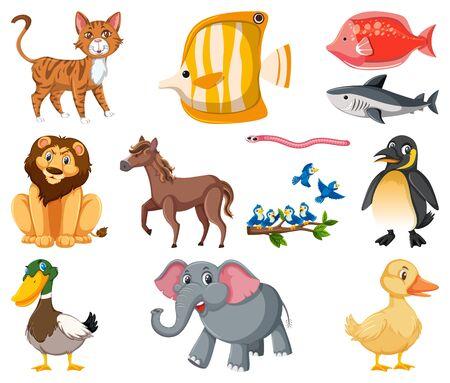 Große Reihe von verschiedenen Tierarten auf weißer Hintergrundillustration