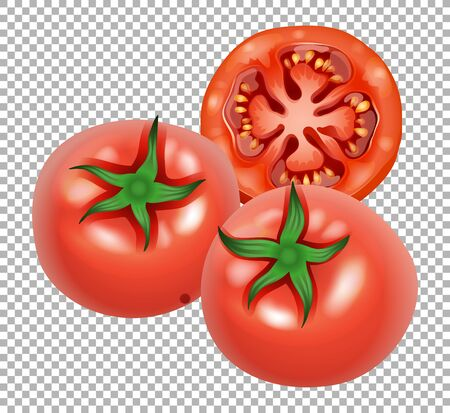 Red tomatoes on transparent background illustration