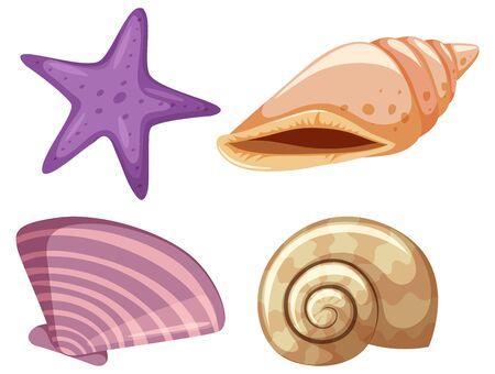 Set of starfish and seashells on white background illustration