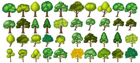 Big green trees on white background illustration