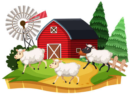 Farm sheep cartoon character on white background illustration