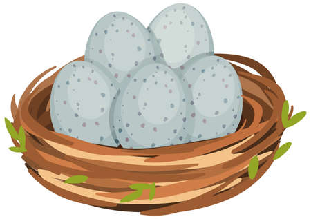Eggs in the bird nest isolated illustration Иллюстрация