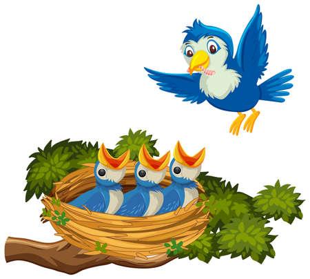 Mother bird feeding chicks illustration
