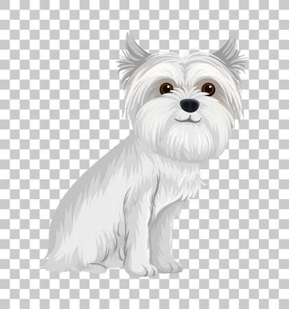White Australian Terrier in sitting position cartoon character isolated on transparent background illustration