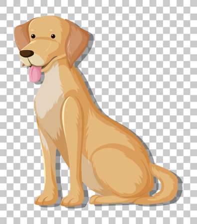 Yellow Labrador Retriever in sitting position cartoon character isolated on transparent background illustration