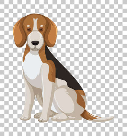 Beagle in sitting position cartoon character isolated on transparent background illustration