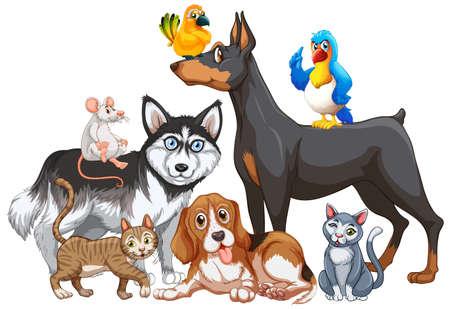 Group of pet on white background illustration