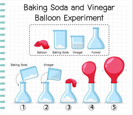 Science experiment with baking soda and vinegar balloon illustration