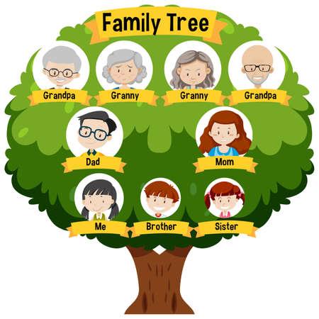 Diagram showing three generation family tree illustration