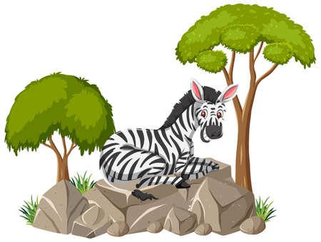 Isolated scene with a zebra laying on stone illustration Ilustrace