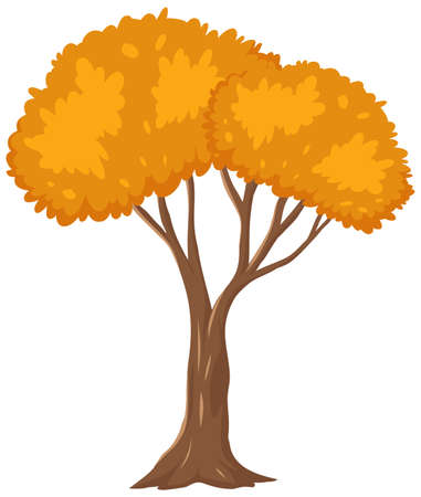 Isolated autumn tree on white background illustration