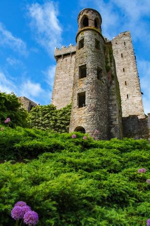 Tower at Blarney Castle Фото со стока - 115793186