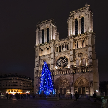 Notre Dame Cathedral Christmas