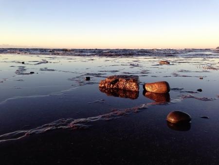 sunrises: Long Reef Beach at Sunrise