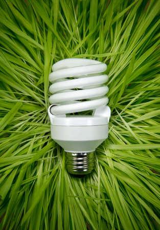 緑の草の上コンパクト蛍光ランプ