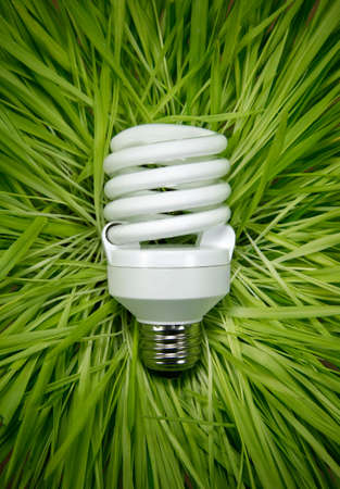 sustainable energy: Compact Fluorescent Lamp on Green Grass Stock Photo