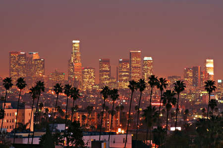 southern california: LA Skyline with Palm Trees Stock Photo