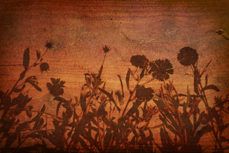 Floral Silhouette on Wood