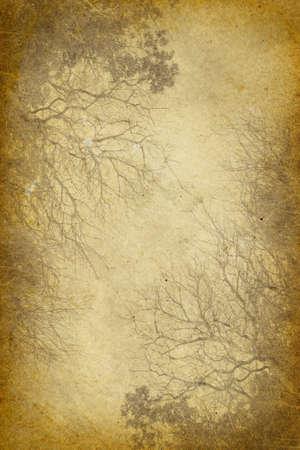 Grunge Vintage Forest Background