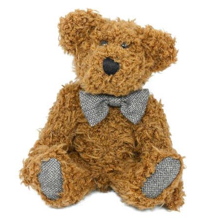 Teddy Bear Isolated Reklamní fotografie