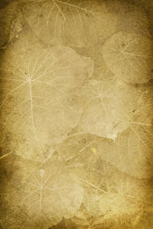 broad leaf: Vintage Broad Leaf Imprint