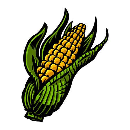 sweetcorn: Corn Illustration