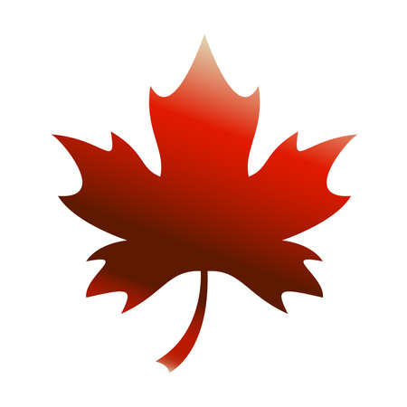 Maple Leaf Vector Icon Standard-Bild - 49650762