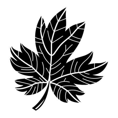 maple tree: Maple Leaf Vector Icon Illustration