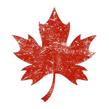 red maples: Maple Leaf Vector Icon Illustration