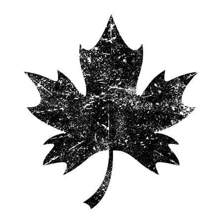 Maple Leaf Vector Icon Ilustrace