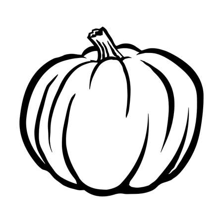 dynia: Pumpkin Vector Icon