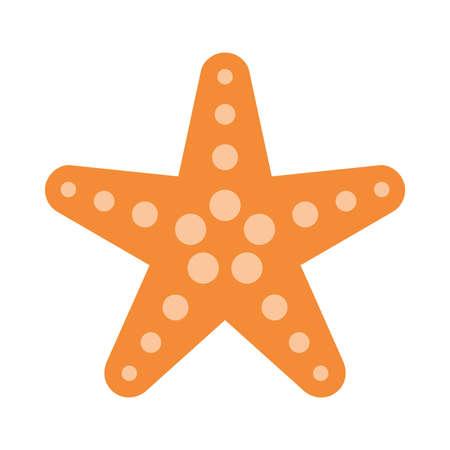 invertebrate: Starfish Vector Icon Illustration