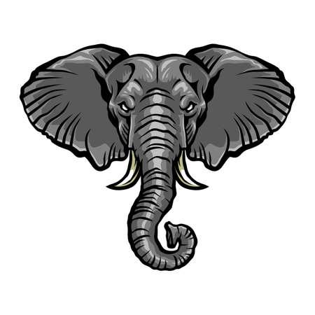 Elephant chef  Banque d'images - 51883532