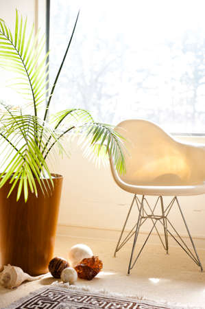 a modern chair and plant