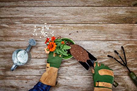 garden tool: planting flowers