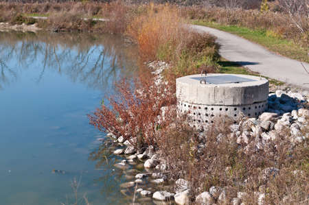 runoff: A perforated concrete pipe forms part of a stormwater management system in a suburban pond.