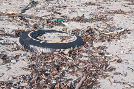 An old tire lies buried in the sand on a beach surrounded by other garbage. Stock Photo