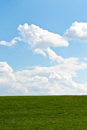 A grass covered hill with a few dandelions stands in front of a blue sky with puffy white clouds.