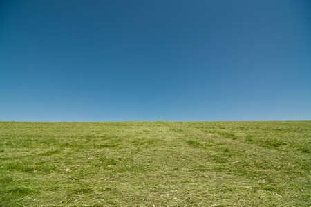 cut grass: A hill covered with bright green, recently cut grass stands in front of a deep blue sky. Stock Photo