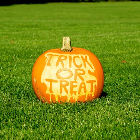 Picture of a pumpkin, with Trick Or Treat cut in the surface Standing on a lawn photo