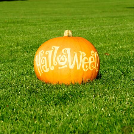 fall images: Picture of a pumpkin, with Halloween cut in the surface Standing on a lawn