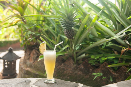 tropical drink: Healthy tropical drink, stock picture