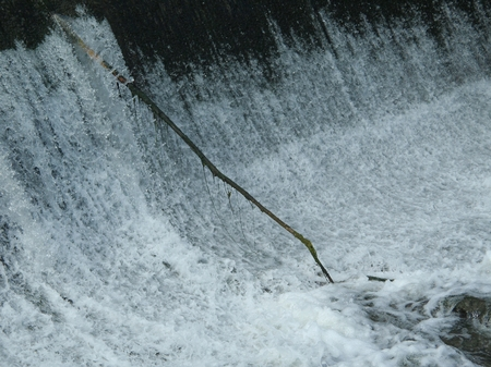 Lone stick coming out of the base of a waterfall, shot from a nearby bridge