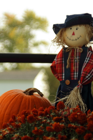 Country scarecrow in red and blue with pumpkins and flowers, shot vertically