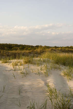 Dunes seen close to sunset.  Stock Photo