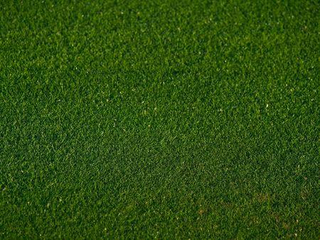 golfcourse: Green Grass background